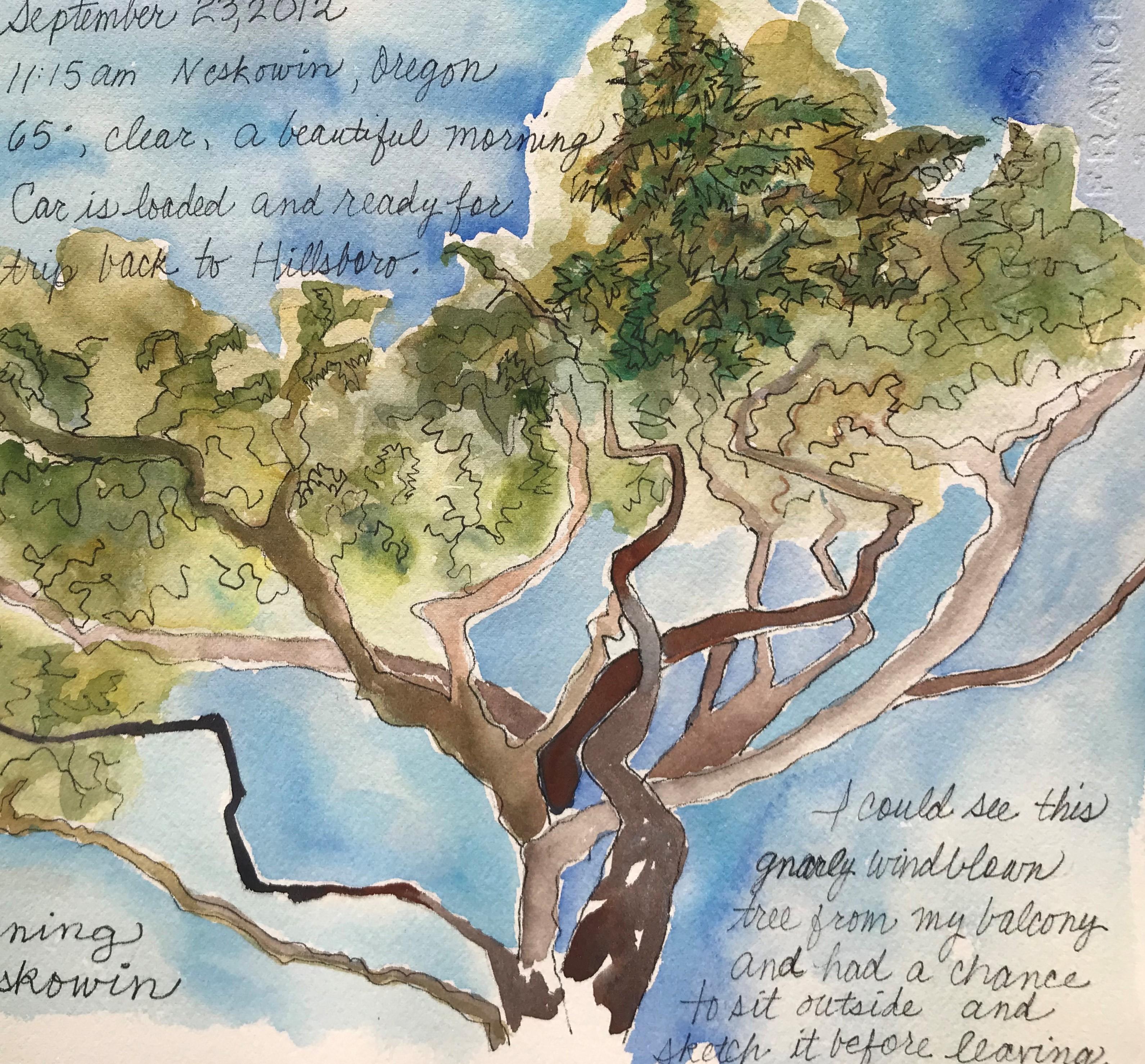 Virtual Nature Journaling Workshop