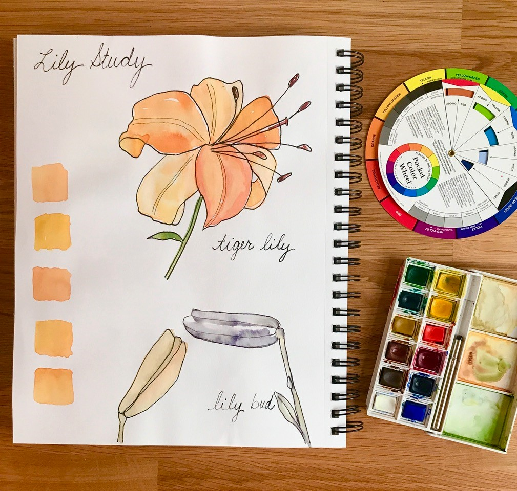 Virtual Watercolor Basics for the Very Beginner