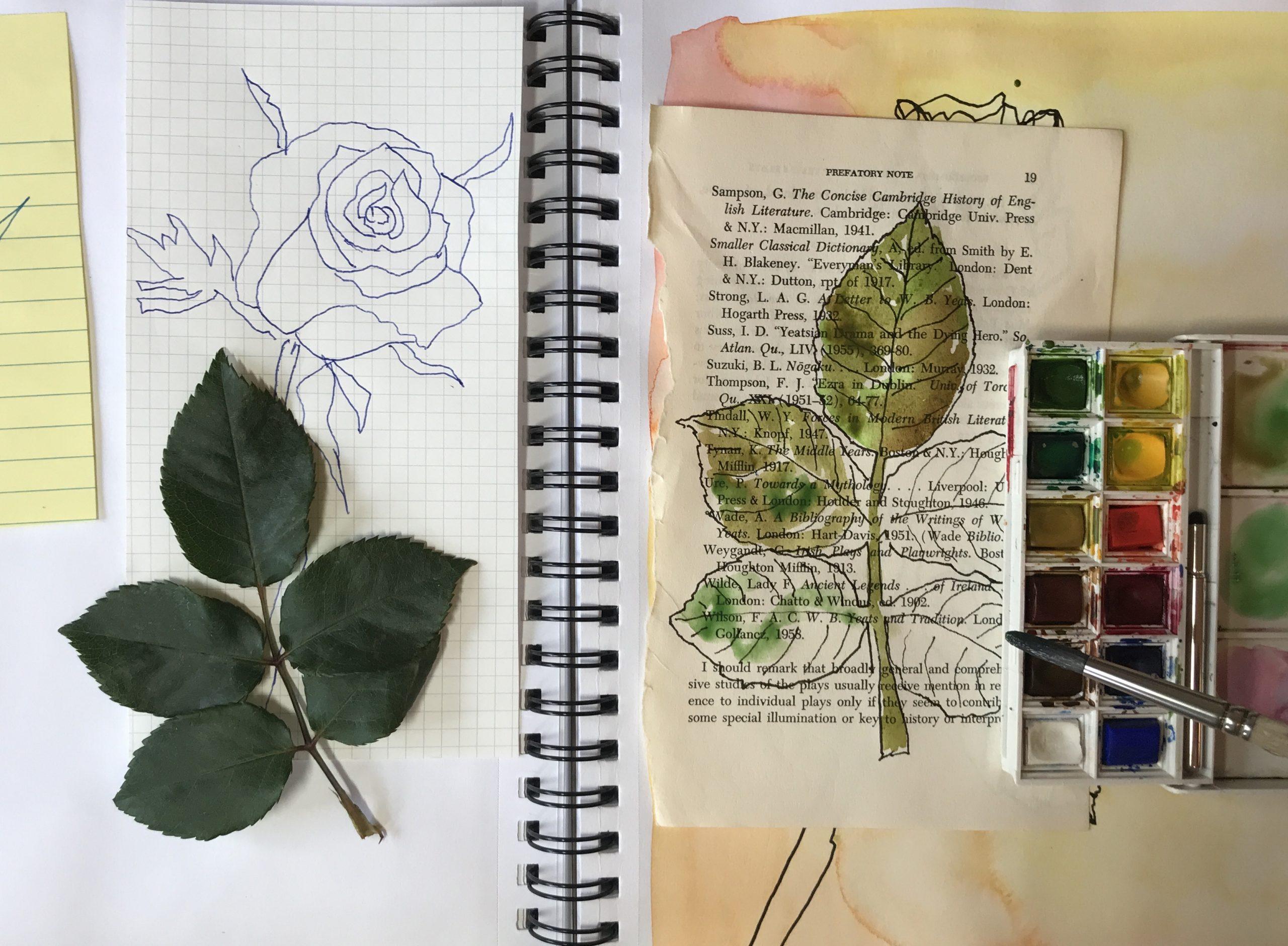 Virtual Nature Journaling
