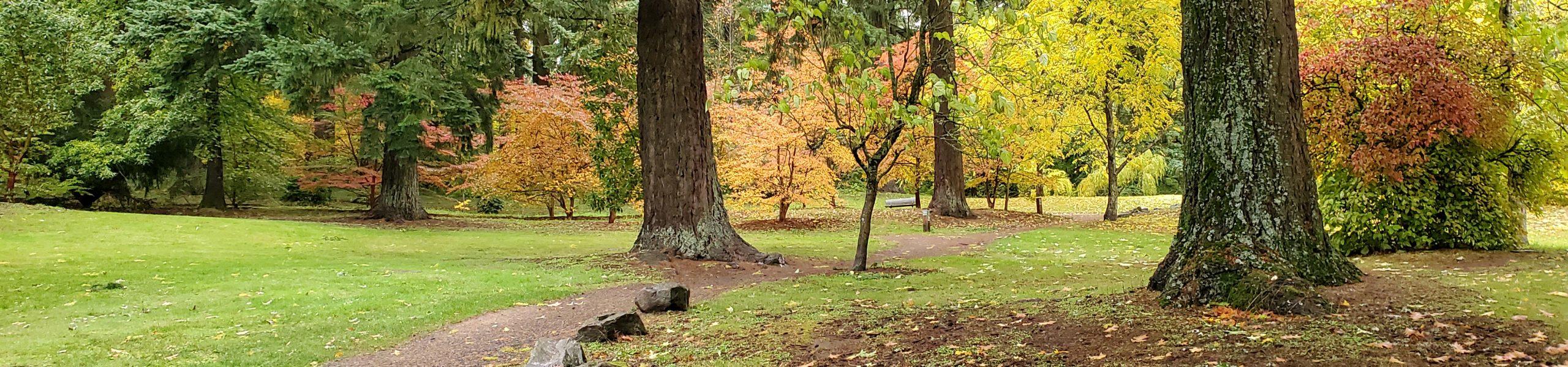About the Arboretum