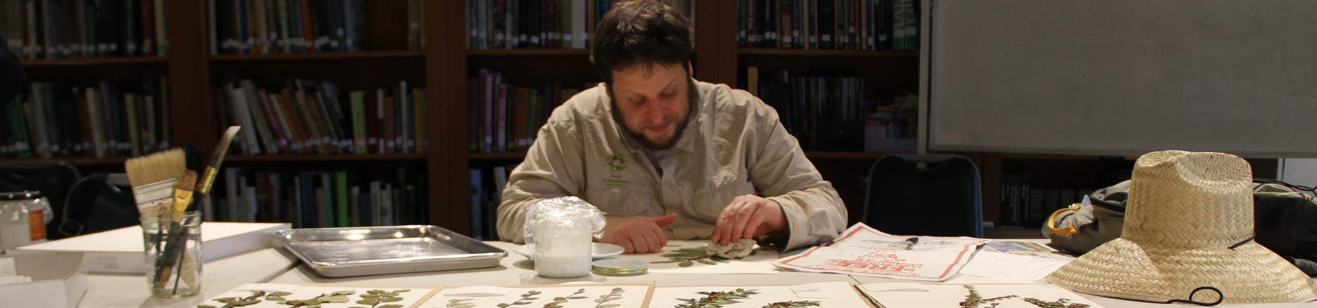 Ask an Expert! How Herbarium Specimens are Made at Hoyt Arboretum…